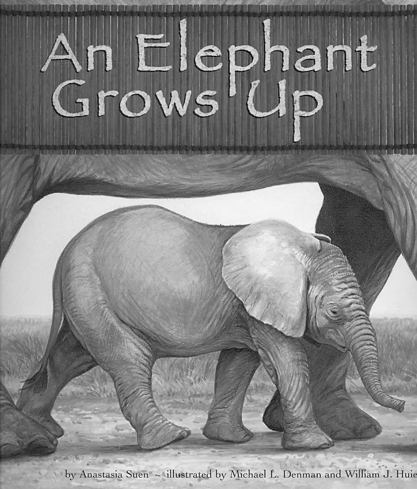 An Elephant Grows Up By Suen, Anastasia/ Denman, Michael L. (ILT)/ Huiett, William J. (ILT)